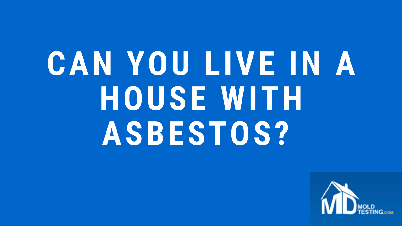 Can you live in a house with asbestos (Asbestos Testing Alexandria Virginia)