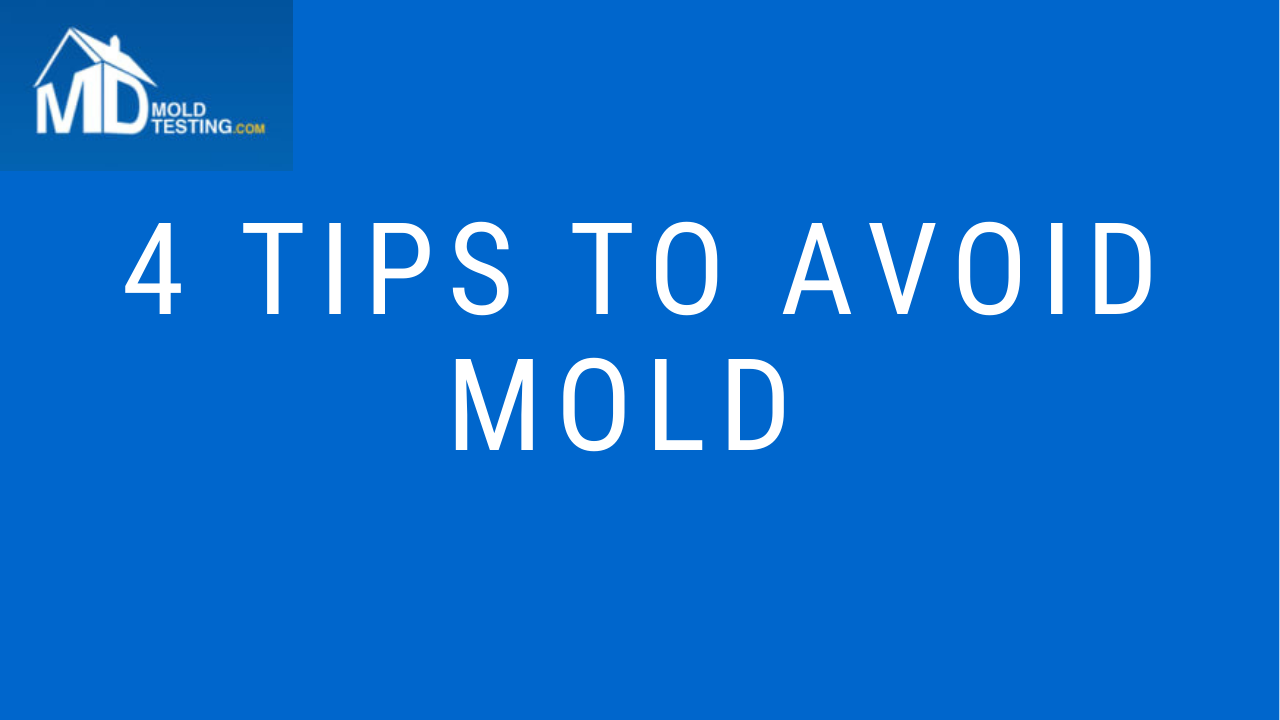 Mold Testing Tips